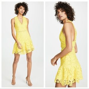 Alice + Olivia Marleen Lace Fit And Flare Dress